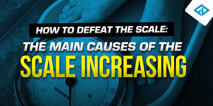 Main Causes For The Scale Increasing