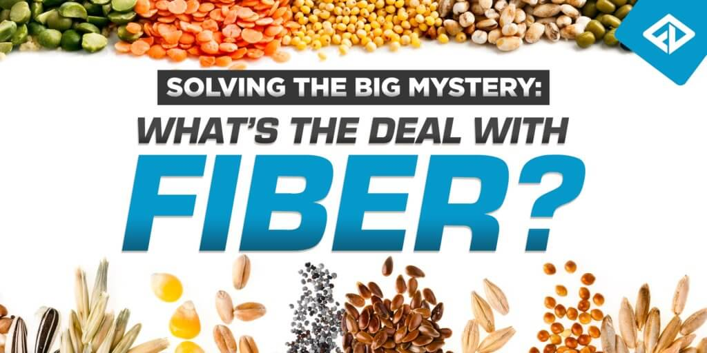 The Importance of Fiber